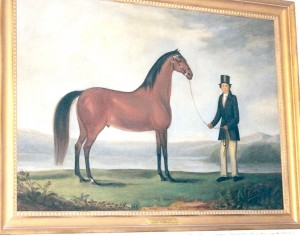Painting of Byron - Josiah's horse