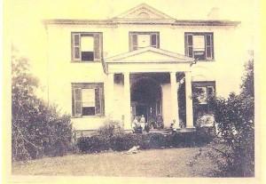 springfield plantation